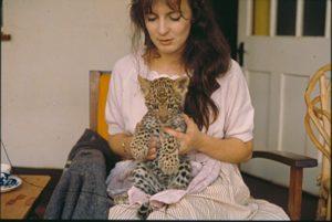 Feeding the baby leopard
