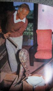 Constantine Ionides moving a Gabon viper